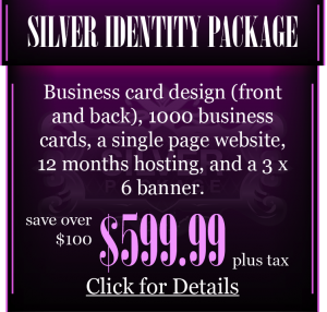 Silver Identity Package
